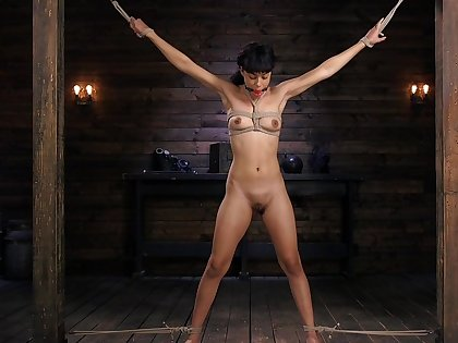 Merciless BDSM sexual game with a slutty Latina
